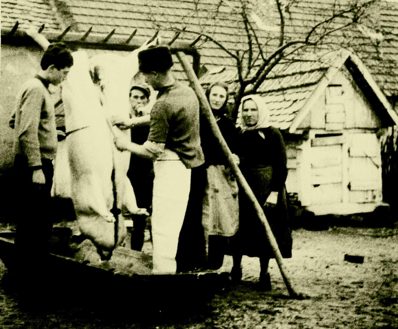 Békebéli disznóvágás és sonkakészítés emlékére